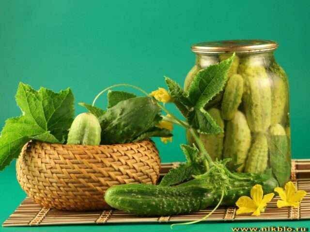 Рецепт засолки огурцов на зиму: кладовая здоровья